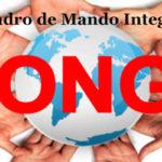 Cuadro de Mando Integral ONG