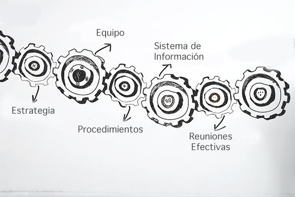 Desarrollo empresa